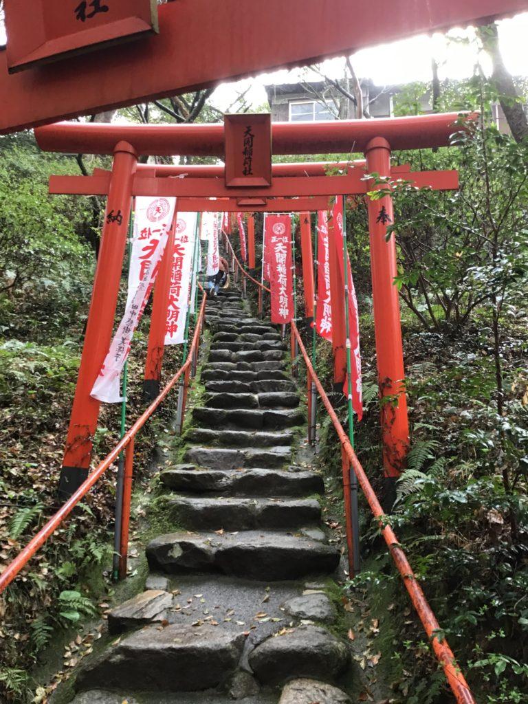 天開稲荷神社 本殿 階段 すごい 鳥居